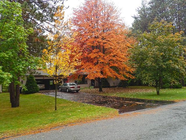 sealcoat driveway